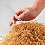 Knowledge Management Needle-in-Haystack